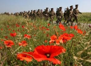 На Львівщині перепоховають солдатів ворогуючих армій Першої світової війни