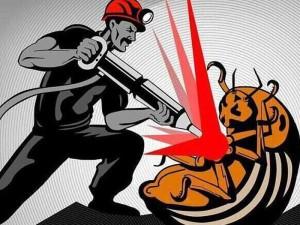 """Донбасу остогидли сепаратисти: шахтарі вже самі виганяють """"колорадів"""""""