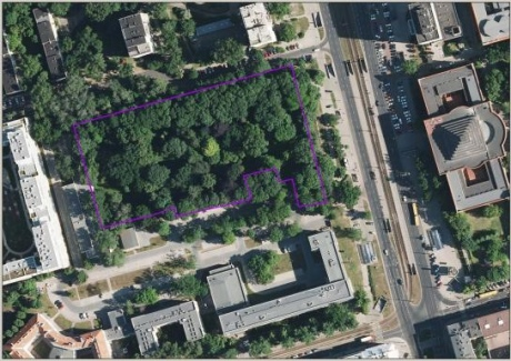 У центрі польської столиці сквер назвуть на честь українця Василя Стуса