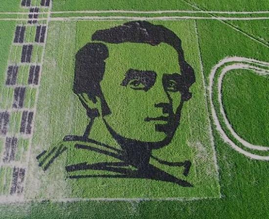 На Херсонщині з вирощеного в полі чорного рису вийшов портрет Тараса Шевченка, який видно з космосу