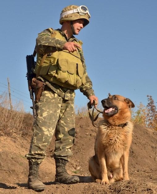 У Рік Собаки – зі знанням про те, хто вона для українців…