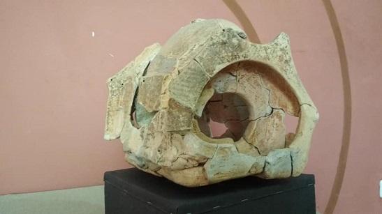 """У заповіднику """"Трипільська культура"""" займаються """"архітектурно-археологічним експериментом"""" – будують трипільську хату з напівсферичним дахом"""