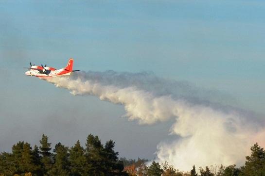 До гасіння масштабних пожеж на Житомирщині задіяно літаки ДСНС і військову спецтехніку